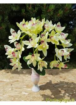Orchidėjos šaka su ružavu viduriuku 1423