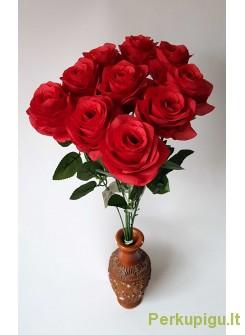 Rožė su kotu, raudona sp., 10 vnt