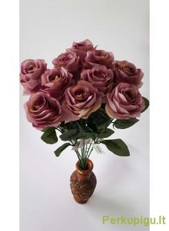 Rožė su kotu, šv. violetinė, 10 vnt