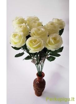 Rožė su kotu, balta sp., 10 vnt