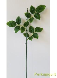 Rožės kotas su trijais lapais 50 cm
