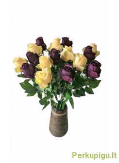 Rožė su kotu, gelsva ir violetinė sp. , 16 vnt